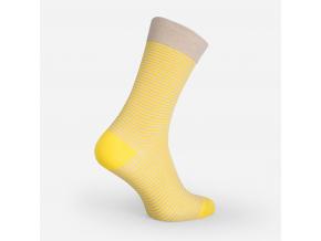 Nerozlučné ponožky - LIME LADDER